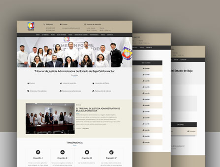 Diseño de Página Gubernamental