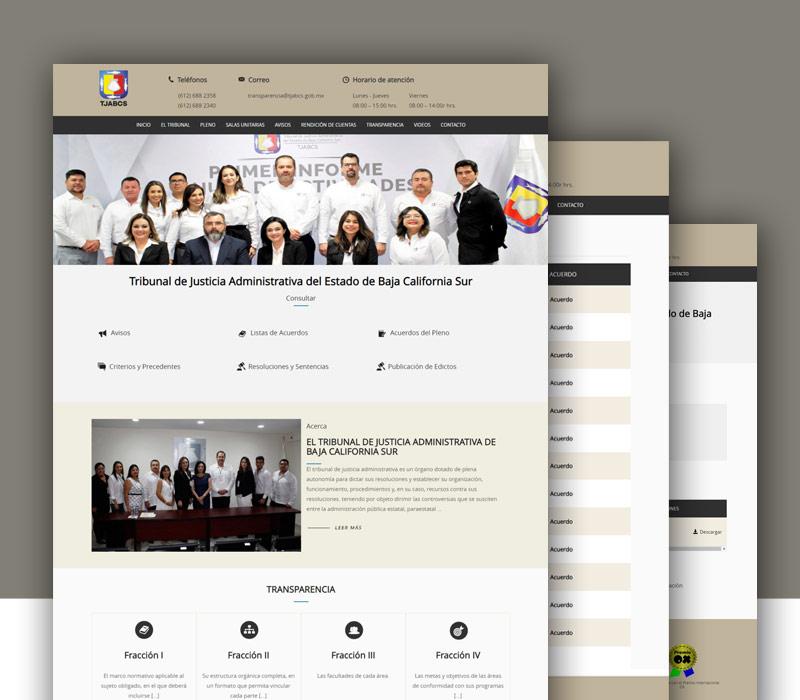 Diseño de página web gubernamental