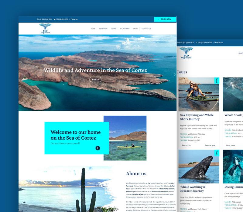 Diseño de página de Agencia de Excursiones